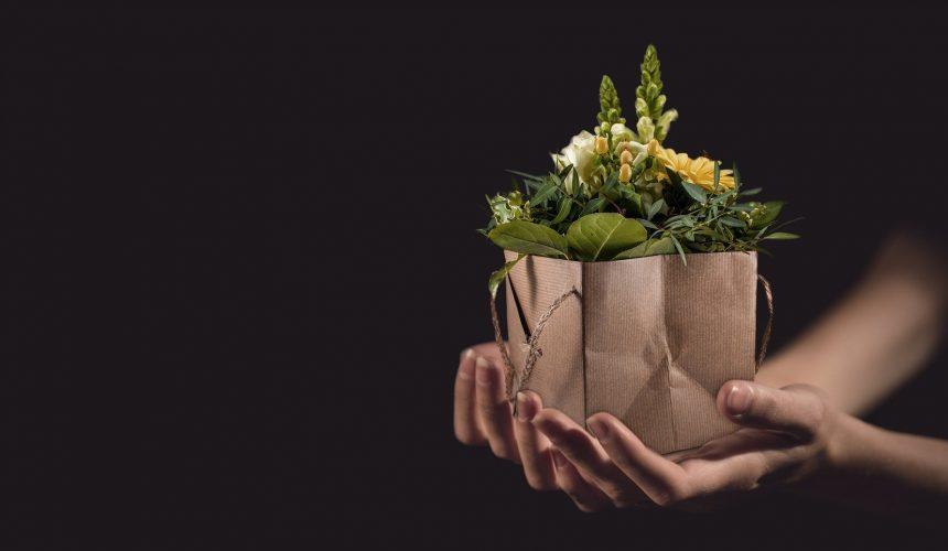 Idées goodies entreprise : notre sélection des meilleurs gadgets pour faire fleurir votre entreprise !